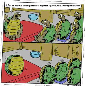 TurtleBG-1